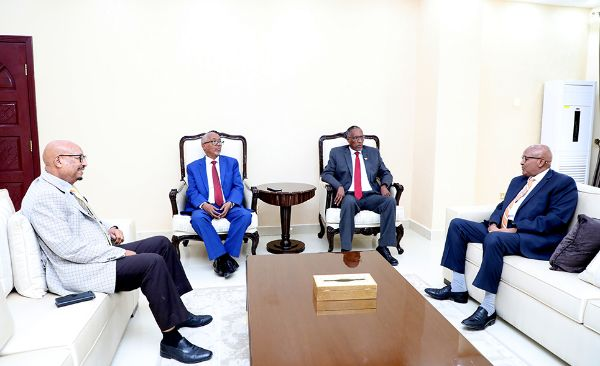 President Bihi Meets with Opposition Parties, Discusses Most Pressing Issues